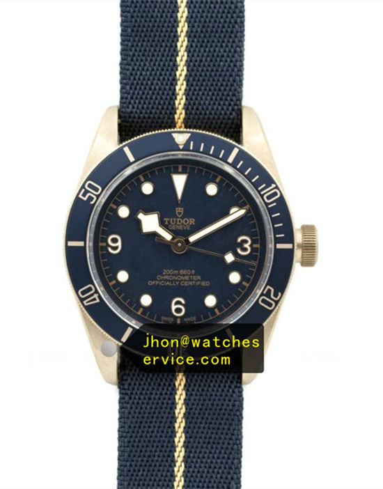39MM Tudor Blue Black Bay M79030b Texture Strap