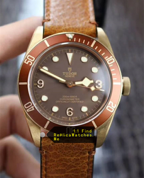 Tudor Black-BAY M79250BM-0001 43MM Bronze Watch