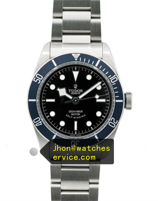Tudor Black-BAY M79230B-0008 41MM Matte Blue