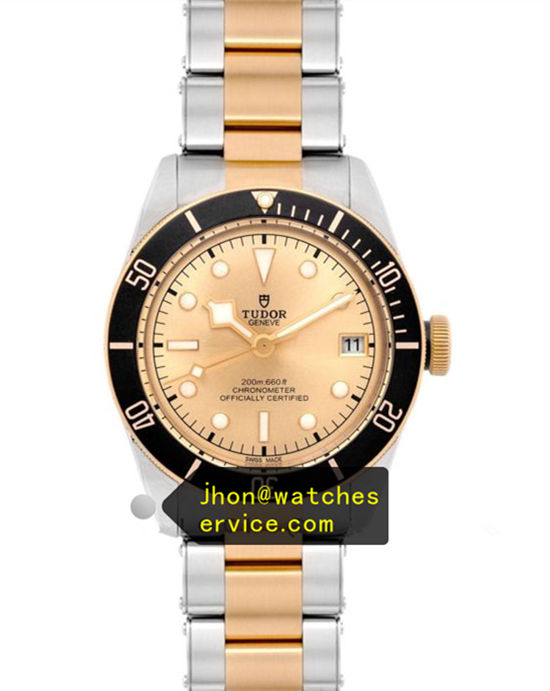 Tudor Black Bay M79733N-0008 Champagne Gold